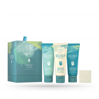 Coffret Sea Kelp 1